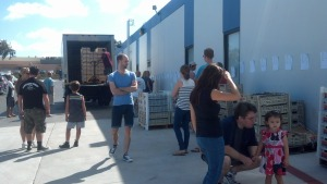 Grape delivery at Curds and Wine