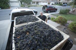 1000 future bottles of wine