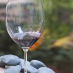 Wine Savoring