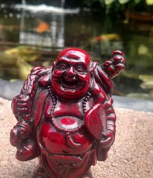 Happy Buddha Belly